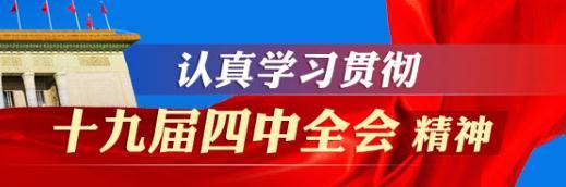 学习宣传贯彻党的十九届四中全会精神
